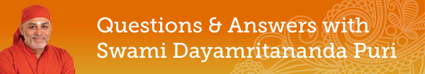Q&A with Br. Dayamrita Chaitanya