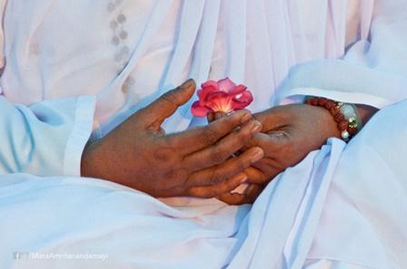 Amma's Hands